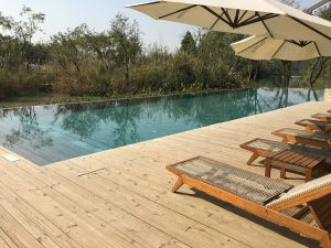 saset deck level swimming pools